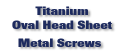 Titanium Oval Head Sheet Metal Screws