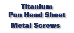 Titanium Pan Head Sheet Metal Screws
